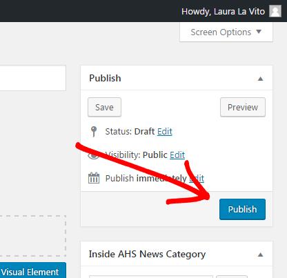 Screenshot of publish section